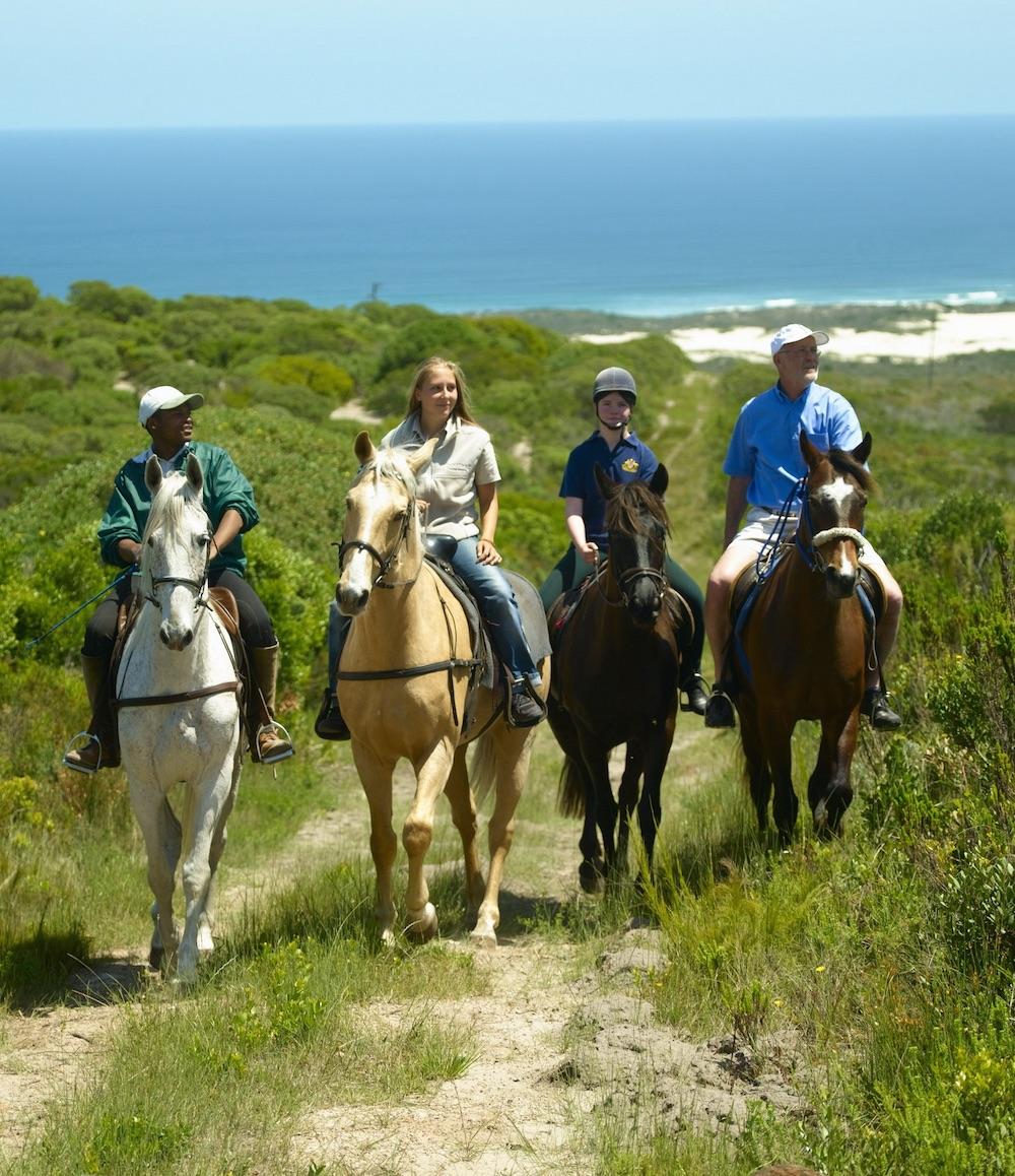 Garden Route Horseriding