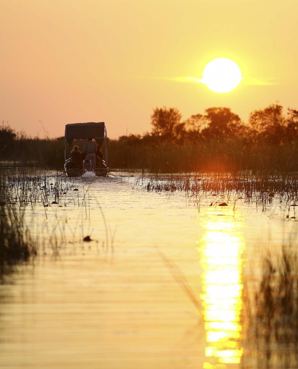 Okavango Sunset Boat Safari